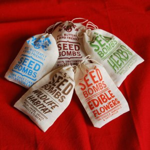 visualingual handmade seed bombs